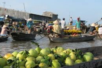 Mekong Advanture - Ben Tre - Ham Luong Full Day